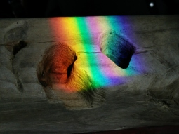 Driftwood prism