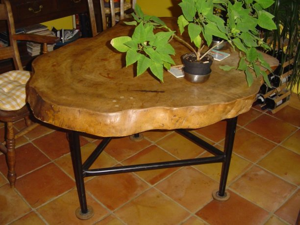 elm slice accent table