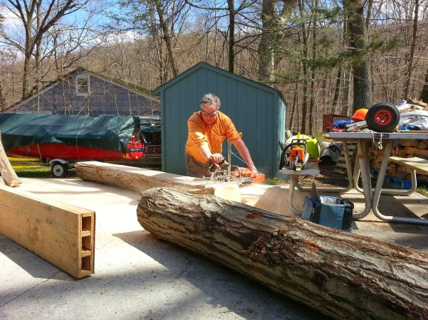 Hogg hand planking oak log